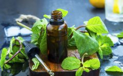 30 Proven Health Benefits of Mint Oil