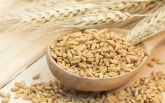23 Proven Health Benefits of Barley