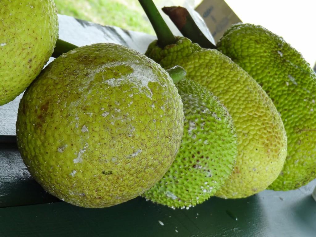 Benefits of Breadfruit