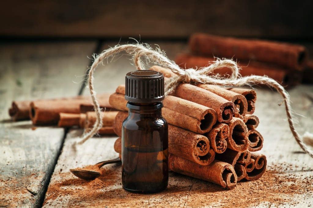 Benefits of Cinnamon Oil