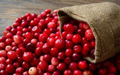 10 Proven Health Benefits of Cranberries