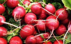 10 Proven Health Benefits of Radish