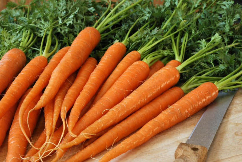 Carrot Benefit