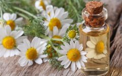 10 Proven Health Benefits of Chamomile
