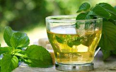 15 Proven Health Benefits of Eucalyptus Tea