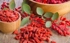 10 Proven Health Benefits of Goji Berry