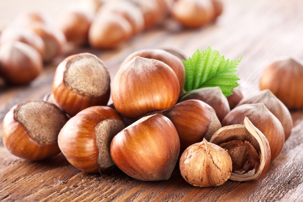 Hazelnuts Benefits
