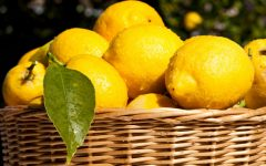 27 Proven Health Benefits of Lemon