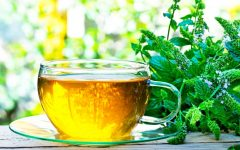21 Proven Health Benefits of Mint Tea
