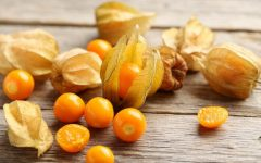 12 Proven Health Benefits of Physalis