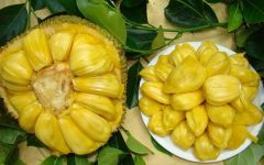 17 Proven Health Benefits of Jackfruit