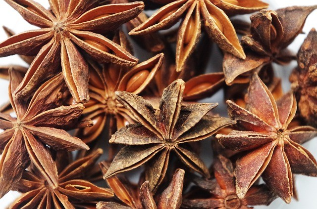 benefit of star anise
