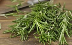 15 Proven Health Benefits of Rosemary