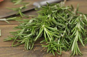 15 Proven Health Benefits of Rosemary