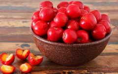 18 Proven Health Benefits of Acerola