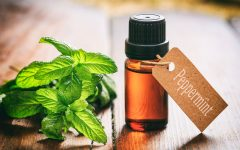 21 Proven Health Benefits of Peppermint Oil