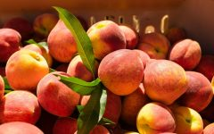 20 Proven Health Benefits of Peach
