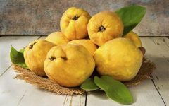 14 Proven Health Benefits of Quince