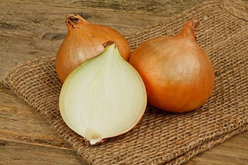 15 Proven Health Benefits of Onion