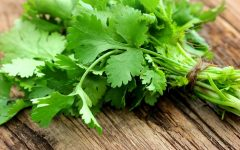 10 Proven Health Benefits of Parsley