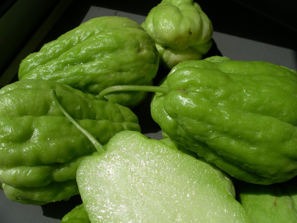 chayote benefits