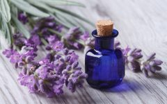 10 Proven Health Benefits of lavender