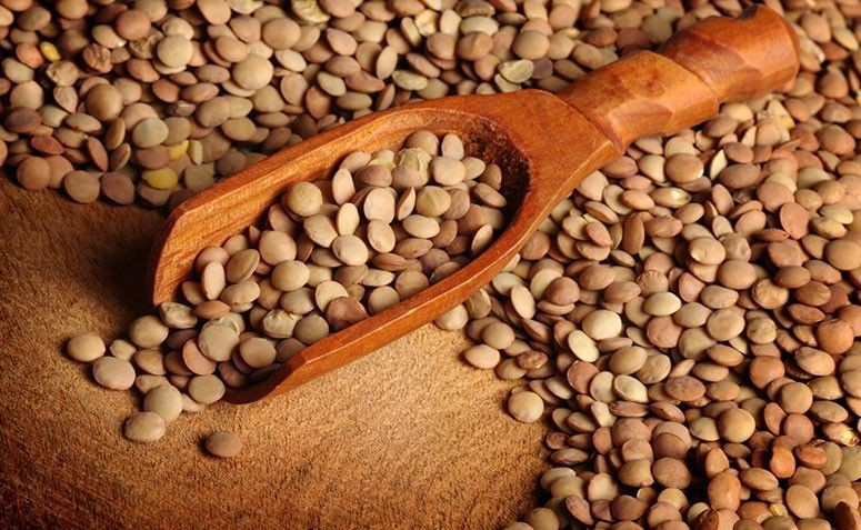 lentils