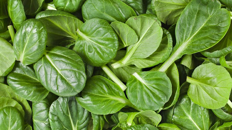 17 Proven Health Benefits of Spinach
