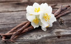 16 Proven Health Benefits of Vanilla
